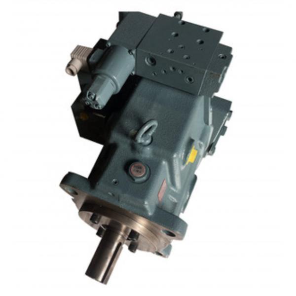 Yuken A100-F-R-04-C-K-A-3266       Piston pump #1 image