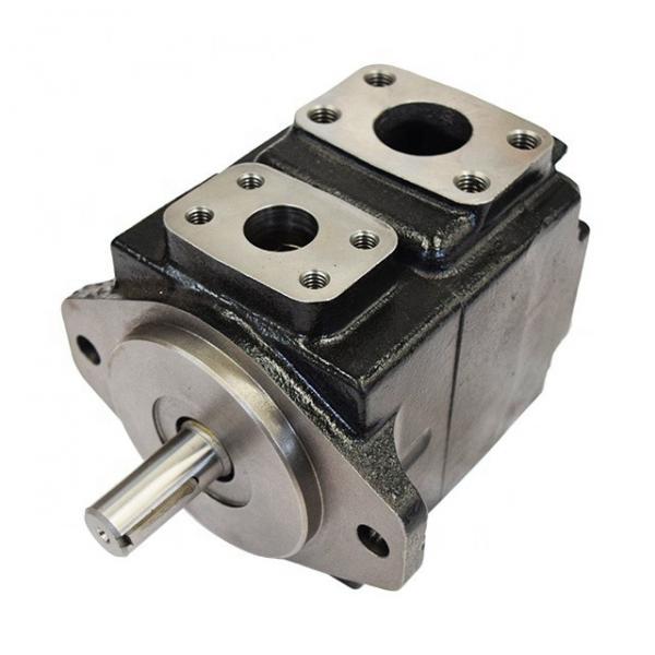 DENISON T6DC-050-025-1R02-B1 vane pump #2 image