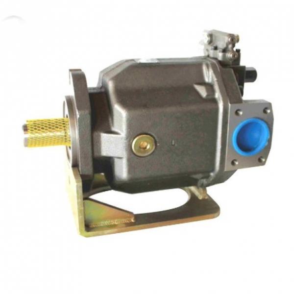 PAKER PV028 R1K1T1NMMC Piston Pump #2 image